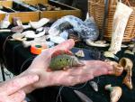 глиняная свистулька Щука